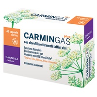Carmin Gas Plus