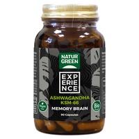 Memory Brain Bio