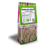 Quinoa Real Tricolor
