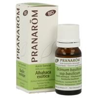Aceite esencial de albahaca exótica