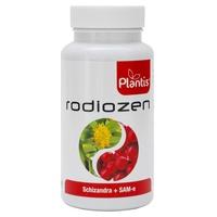 Radiozen