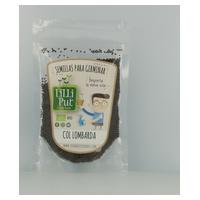 Semillas de Col Lombarda para Germinar Ecológica