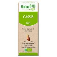 ORGANIC Cassis - 50ml