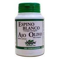 Espino Blanco, Ajo, Olivo