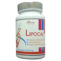 Lipocal