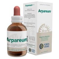 Arpareum