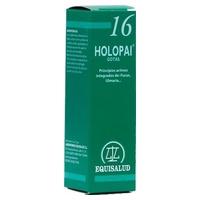 Holopai 16 (Terreno Obesidad)