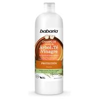 Vinegar Extract And Tea Tree Oil Shampoo