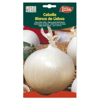 Large Country White Onion Seeds