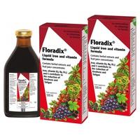 Pack 2x Floradix Hierro