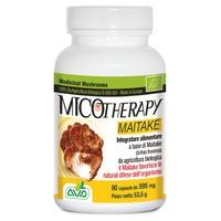 Micotherapy Maitake