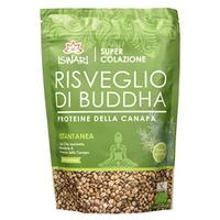 Erwachen von Buddha-Hanfprotein