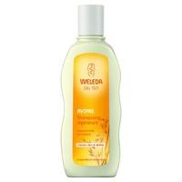 Regenerating Oat Shampoo
