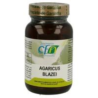Agaricus Blazei