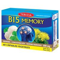 B15 Memory