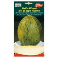 Melón Piñonet piel de sapo-Ricamiel
