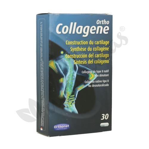 Ortho Collagene (Construcción del Cartílago)