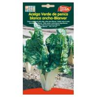 Green Chard Seed Penca Blanca Ancha-Blanver