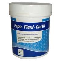 FlexiCartil