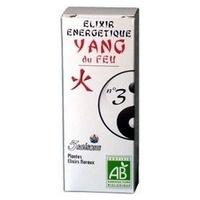 Elixir 03 Yang del Fuego (Angelica)