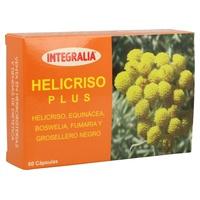 Helichrysum Plus
