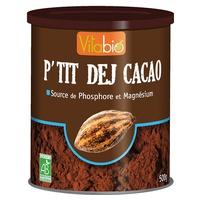 Desayuno Cacao orgánico