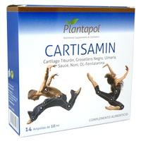 Cartisamin