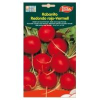 Rabanito Redondo Rojo