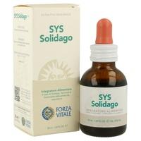 Sys Solidago