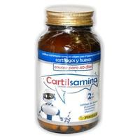 Cartilsamine