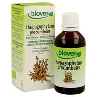 Harpagophytum Procumbens (Griffe du Diable) Bio