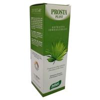 N.10 Prosta Plant