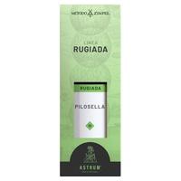 Linea Rugiada Pilosella