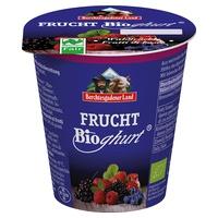 Yogur de Frutas del bosque