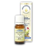 Aceite esencial de abeto de Auvernia Bio