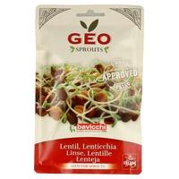 Semillas de Lentejas Geo Bio