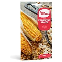 Kukurydza Popcorn AP8202