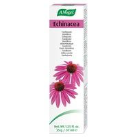 Echinacea Zahnpasta