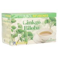 Infusiones Ginkgo Biloba