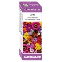 Flower of Life Stress
