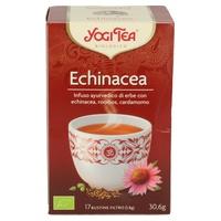 Tè di Echinacea