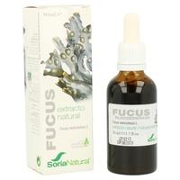 Extracto de Fucus