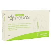 Neural Plactive