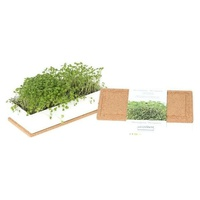 Watercress, Arugula-Grow Box Duo