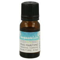 Organic Pine Maritime Essential Oil