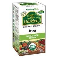 Garden Hierro (Iron)