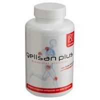 Gelisan Plus