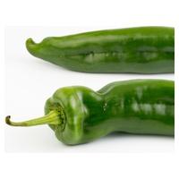 Pimiento verde italiano Bio