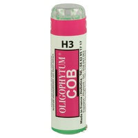 Oligophytum Cobalto (H3 COB)