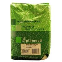 Oregano Leaf Herb